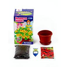"""Ботаника. Вырасти цветы в горшке """"Настурция"""" 15135009 1"""