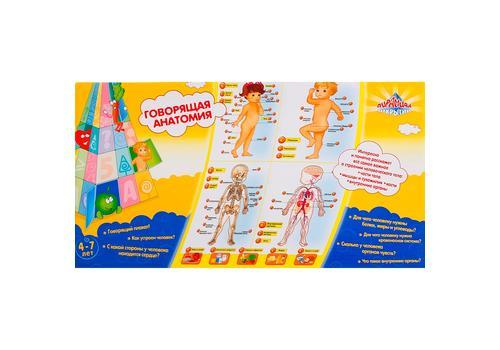 """Говорящий плакат """"Анатомия"""" 13129 1"""
